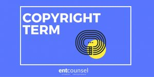 Copyright Term in the Copyright Act